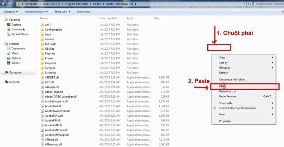 """Dán file """"amtlib.dll"""" vào thư mục của Photoshop CS5"""
